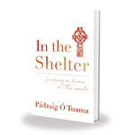 in-the-shelter