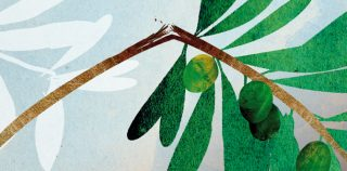 A good question: Are there limits to forgiveness?