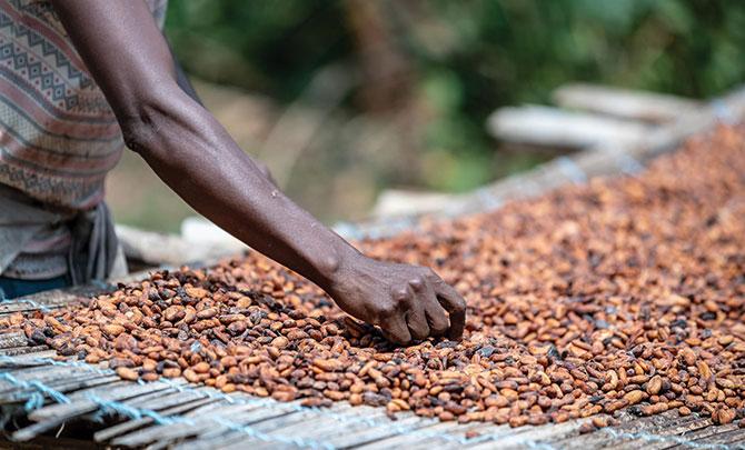 News comment: Fairtrade matters